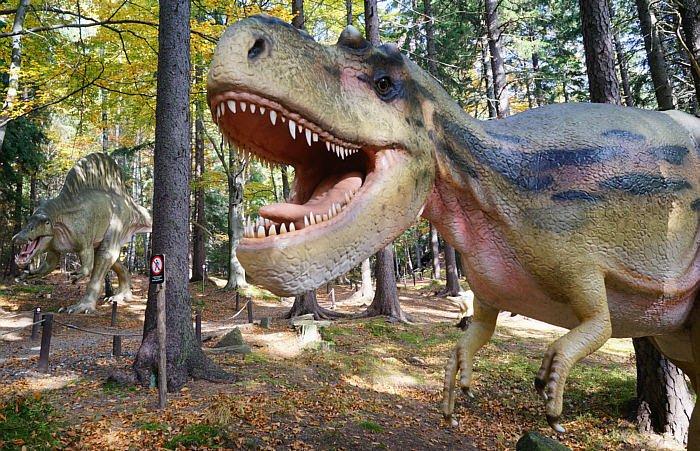 סיור למשפחות לפארק הדינוזאורים והמבוך הגדול