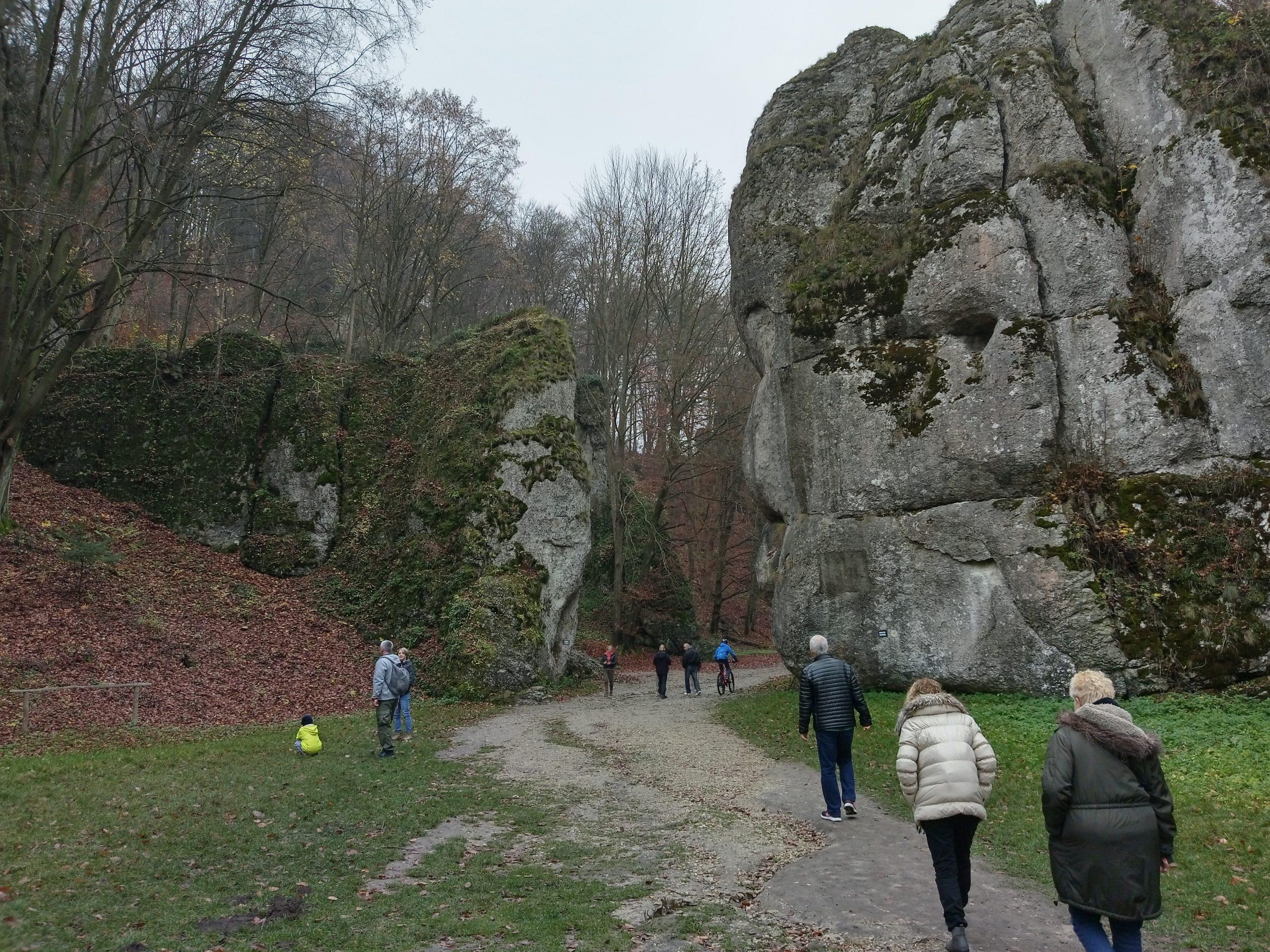 טיול טבע לפארק היפה בפולין ליד קרקוב